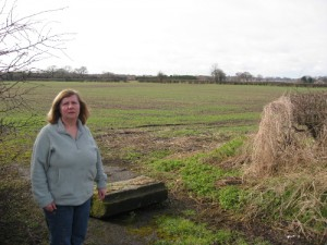 Ann Reid at one of the Green Belt sites that Labour want to build on