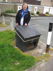 Ann Reid with local salt bin