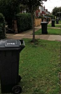 Un-emptied bins on Pulleyn Drive. 5:00pm 16th Sept 2013