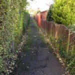 Dog fouling on snickets