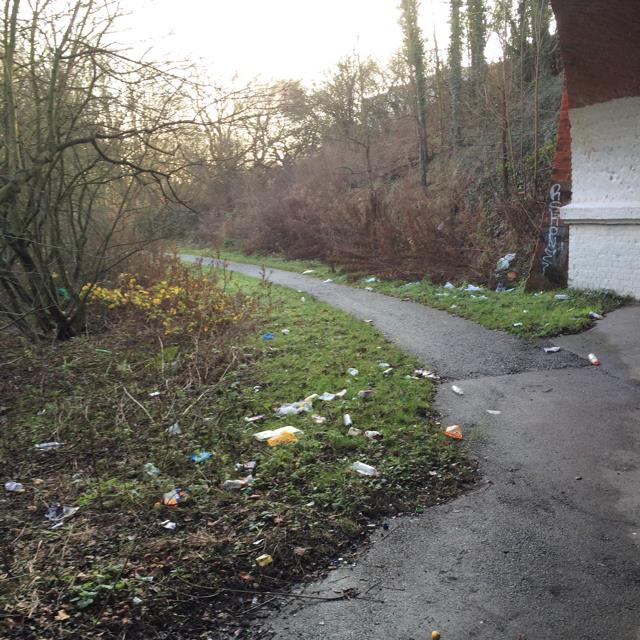 Appalling litter problem on cycle path at Tadcaster Road underpass
