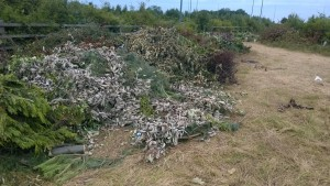 Garden waste dumped by the travellers