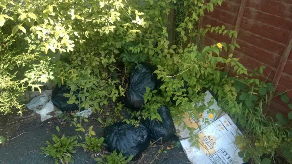 Bin bags dumped in the corner of the car park