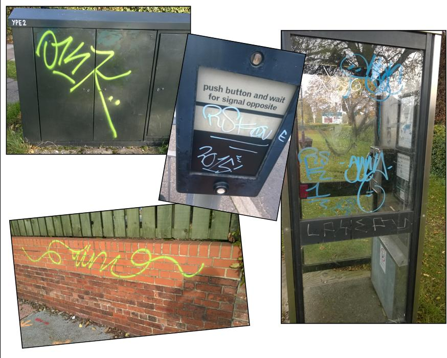 The local Lib Dem team are taking action to get graffiti cleaned up as soon as it appears