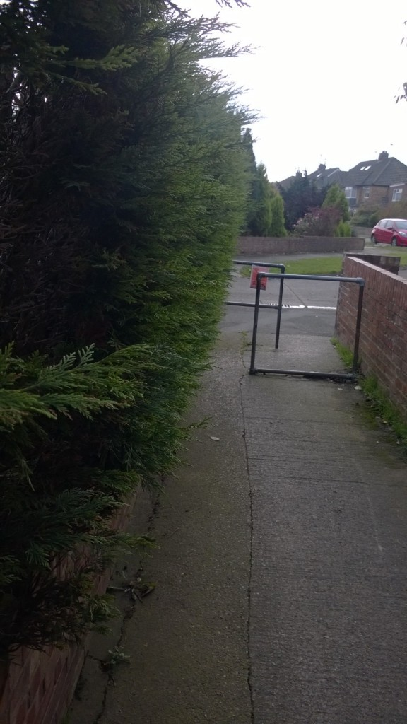 The snicket between Dringthorpe Road and Middlethorpe Grove is being blocked by a resident's conifer hedge