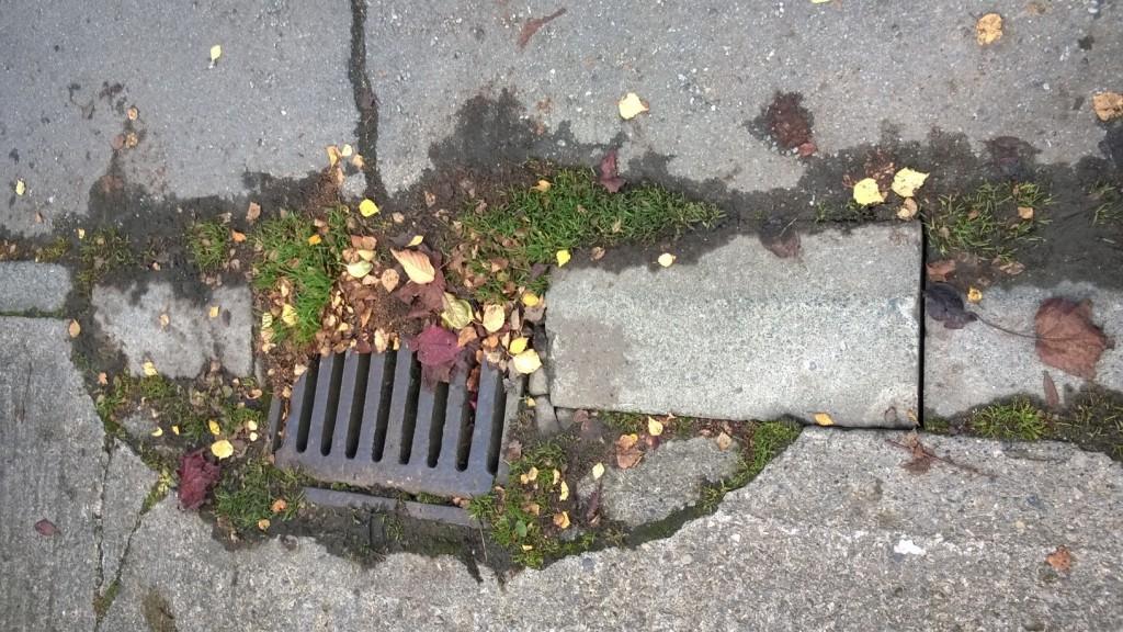 Loose kerb stone on Middlethorpe Grove in need of repair