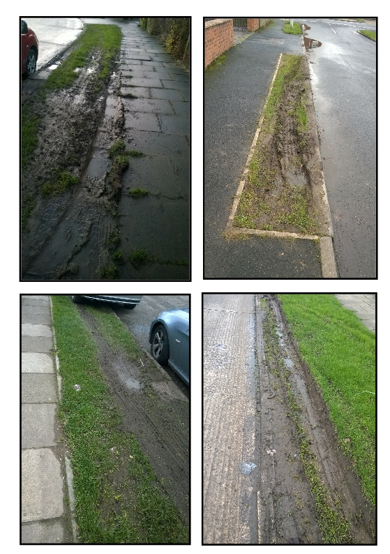 'Grass' verges around Dringhouses are taking a hammering