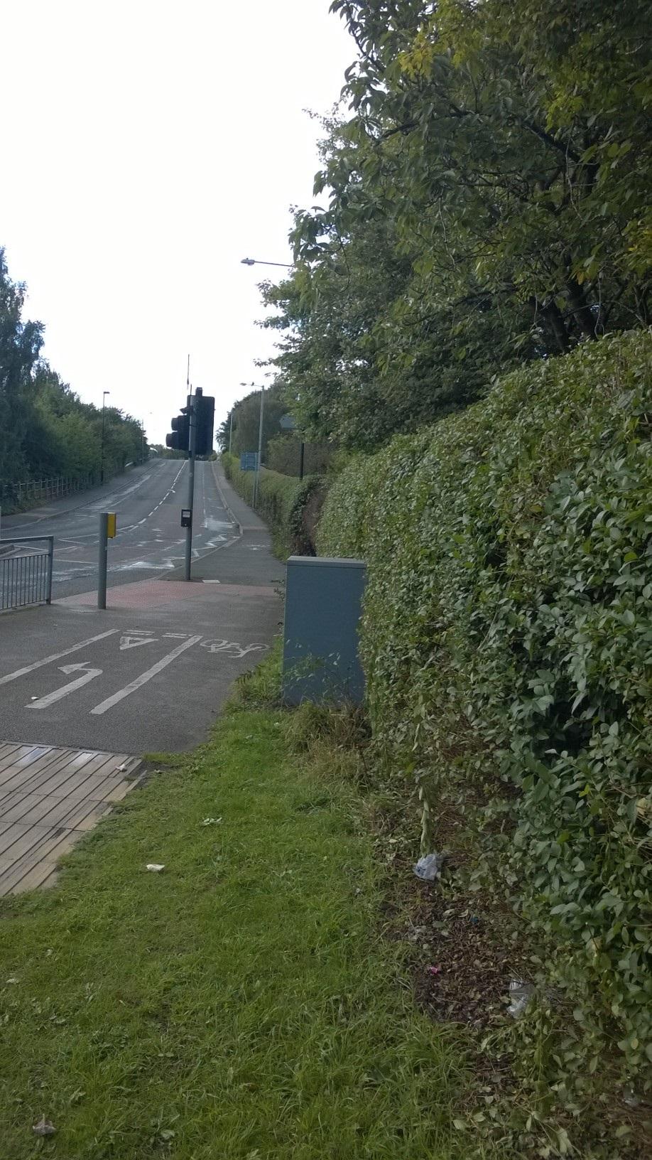 Moor Lane hedge looking trimmer