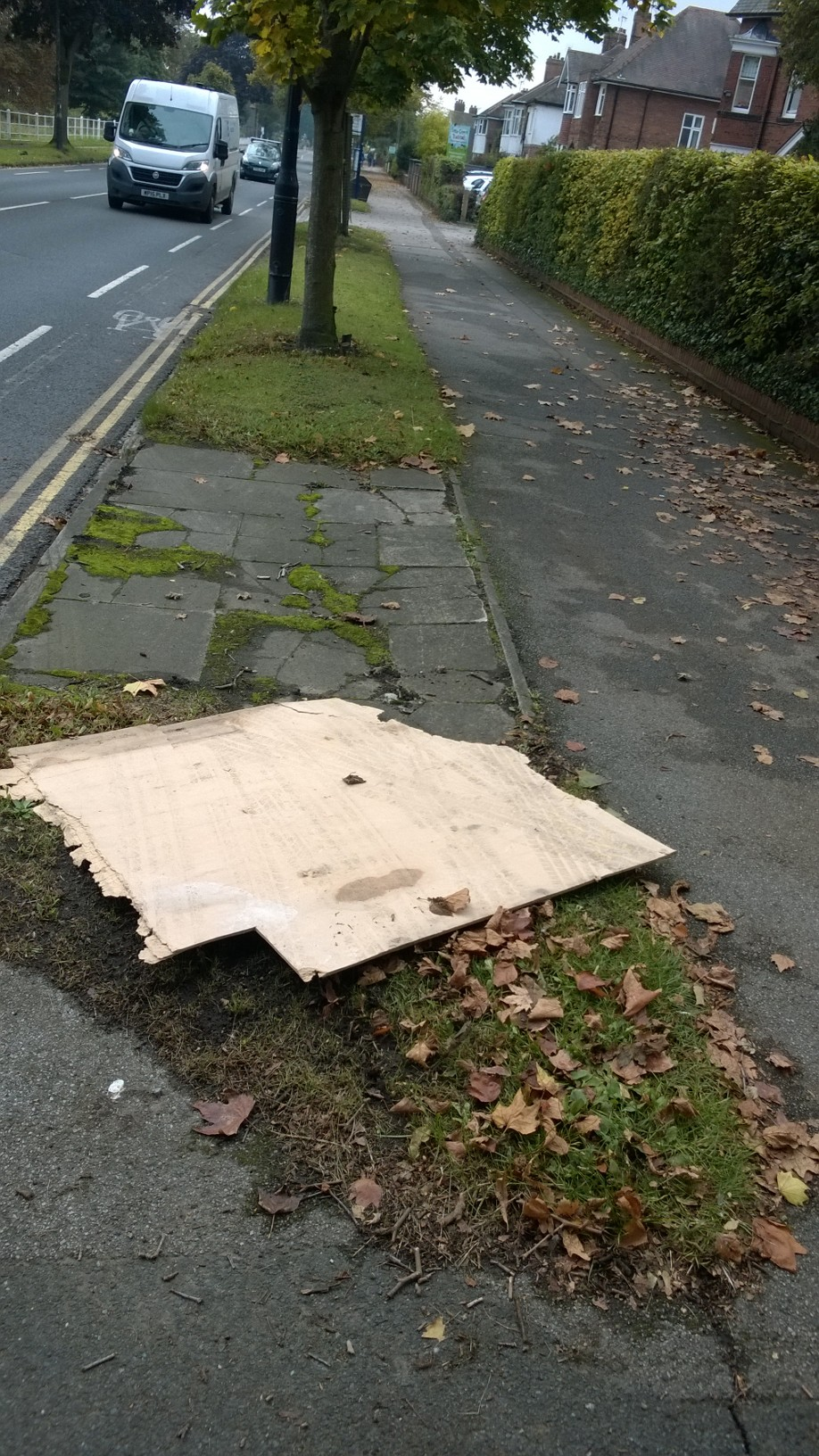 Items dumped on the verge